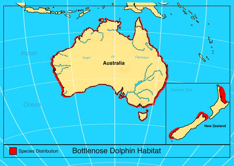 garrettsen-eckerson-dolphin-map