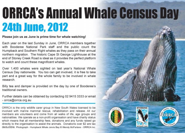 ORRCA's Annual Whale Census 2012