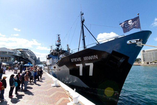 Sea Shepherd Conservation Society Fleet