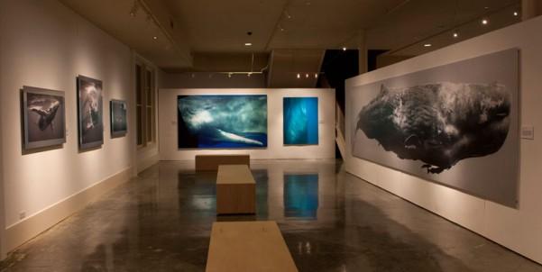 Museum of Monterey Exhibition