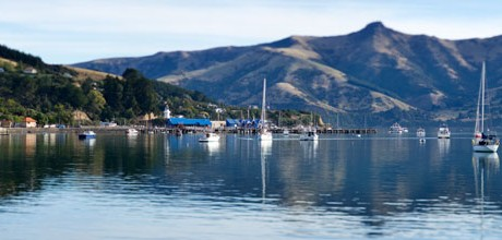 Akaroa - Home of the Hectors