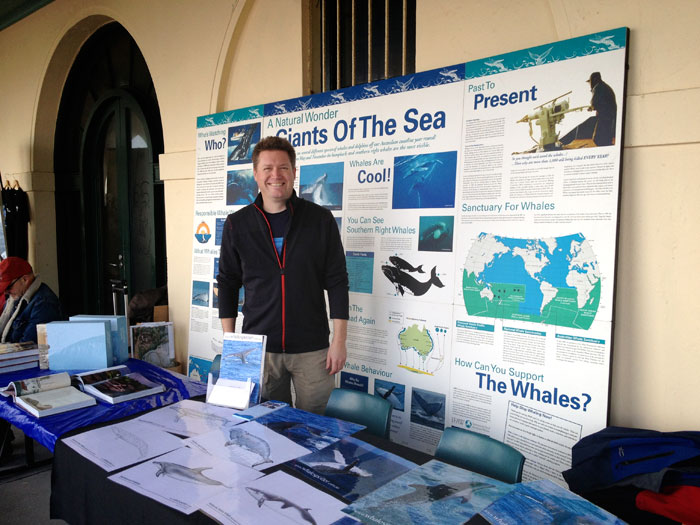 The Whale Spotter Display